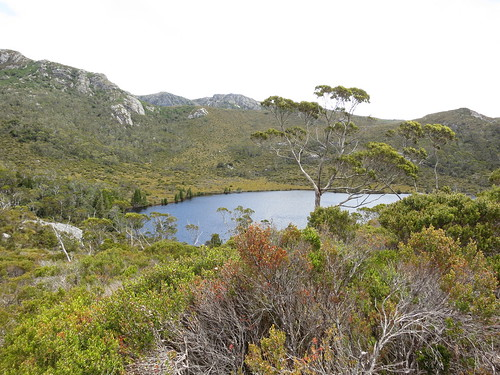 "Lake lilla ""Dove Lake Circuit"" 70/72"