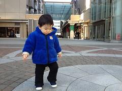 代官山アドレスのとらちゃん2 (2012/1/9)