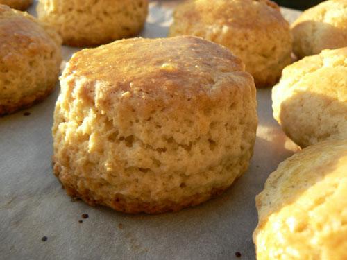 scones 1.jpg