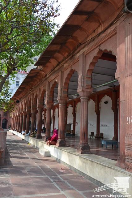 Delhi Fatehpuri Masjid (11)