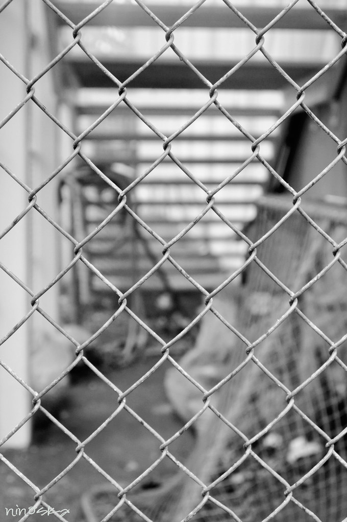 fence-BW