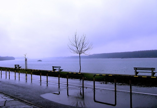 Sunday Rainy Day Without Walkers by kontinova*