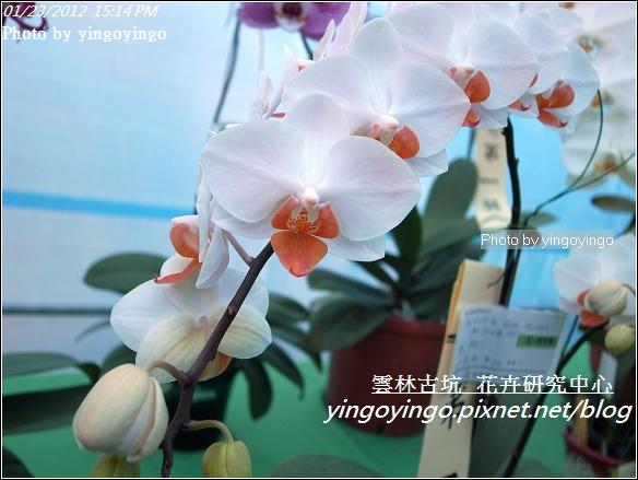 雲林古坑_花卉研究中心20120123_R0050684