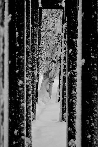 Cold Passage