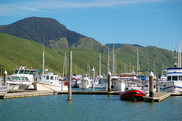 Havelock, New Zealand 4