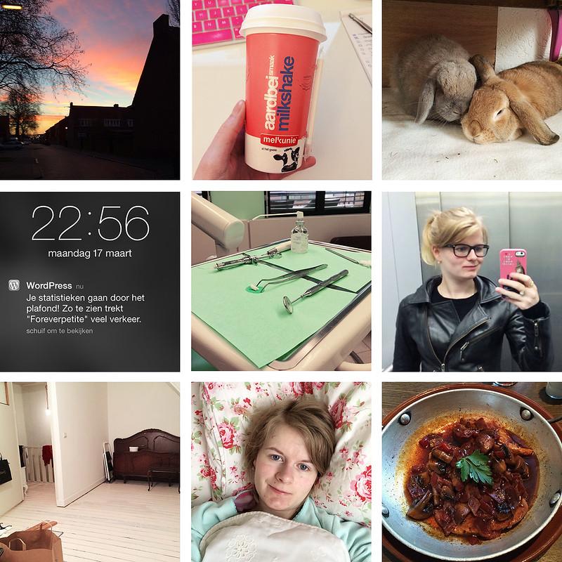Photo Diary #14 @ forever petite.net