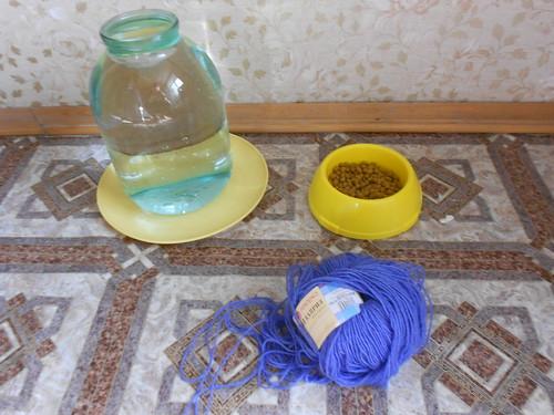 муся принес синий клубок на кухню