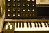 minimoog voyager by Pink Dispatcher