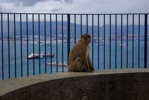Almería - Gibraltar