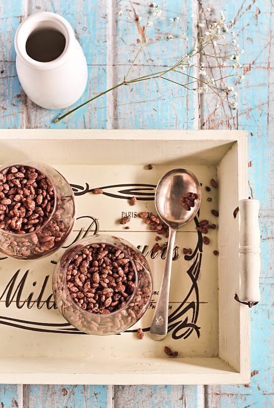 chocolate_cereal_mousse-7