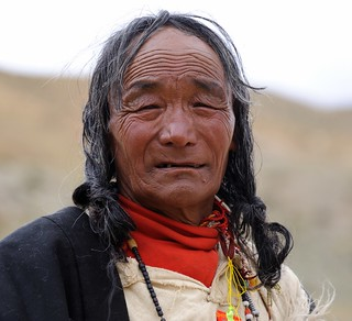 "The Lord of cattle ""Tibetan nomads"" balang wangchuk."