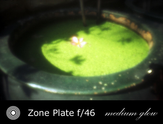 zp2411-08