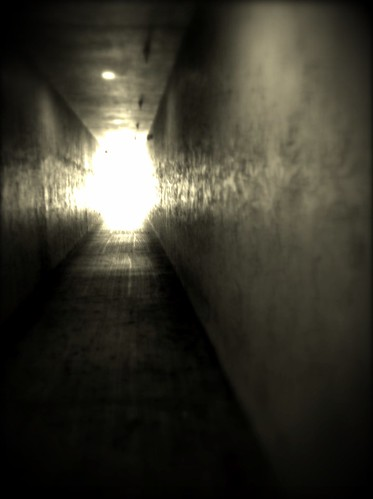 165/365- Light at the end by elineart