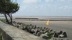 Guyana-2944