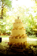 Our mushroom wedding cake