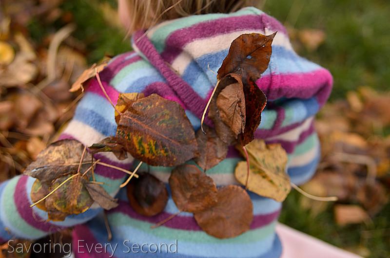 Fall Leaves44-Edit.jpg