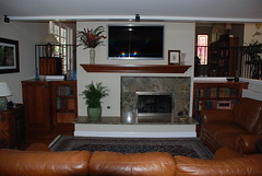 Rain Forest Fireplace