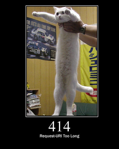 414 - Request-URI Too Long