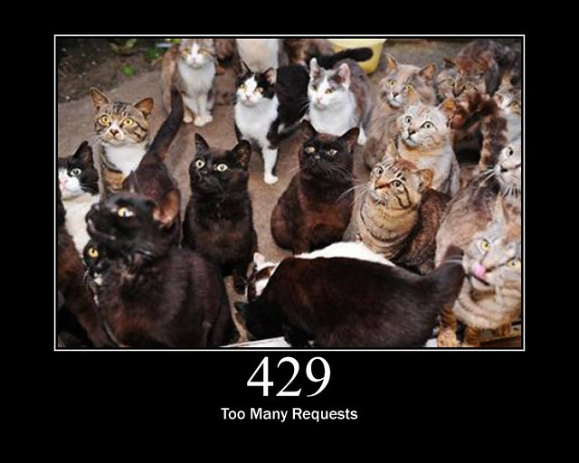 429 - Too Many Requests