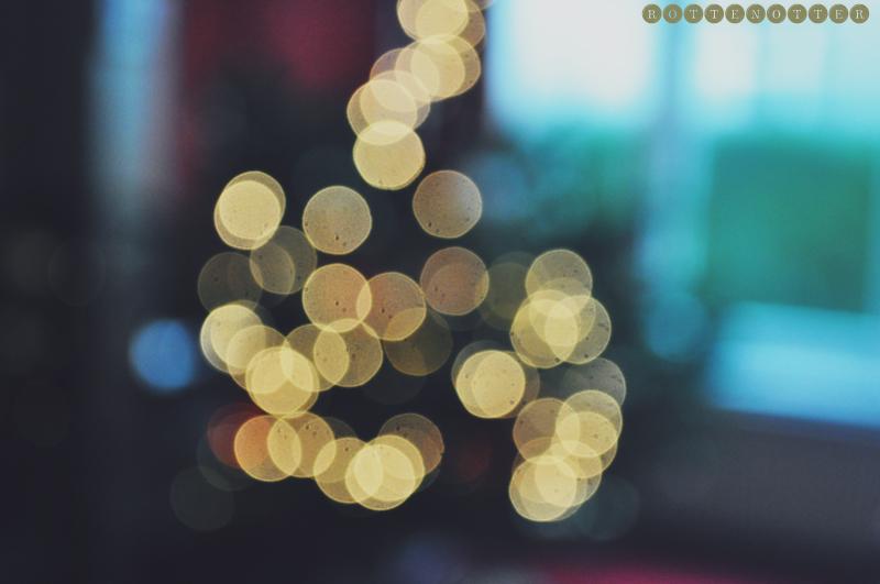 christmas 2011 13