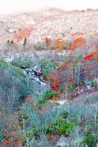 autumn snow cold fall snowflakes fallcolor northcarolina blizzard dixie blueridgeparkway secondfalls blackbalsamknob