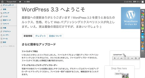 Wordpress 3.3 - 01