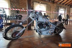 Penedès Road: Harley-Davidson