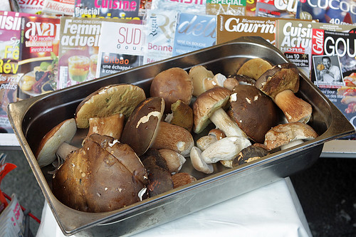 cepes and magazines