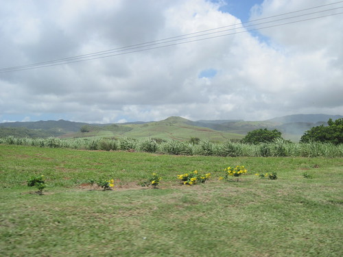 Hills of Mauritius Landscape