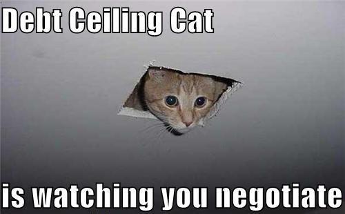 debtceilingcat