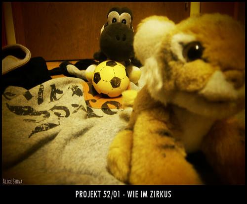 Projekt 52/01 - Wie im Zirkus