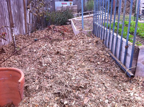 Leaf-litter mulch