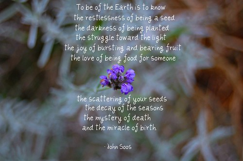 To be of the Earth