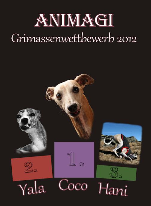 Grimassenwettbewerb2012