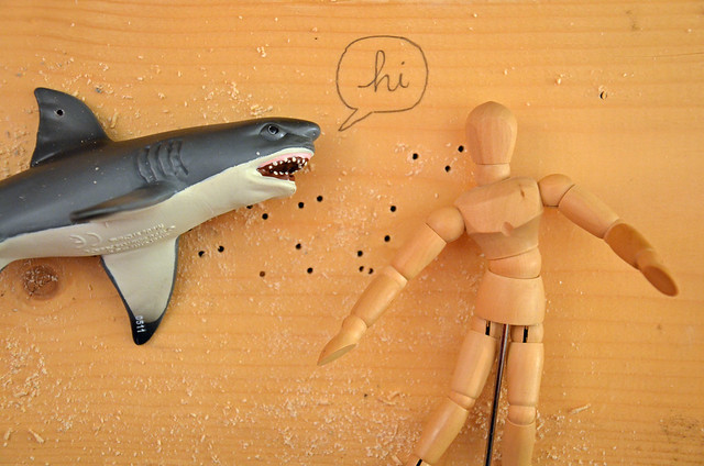 shark vs dummy