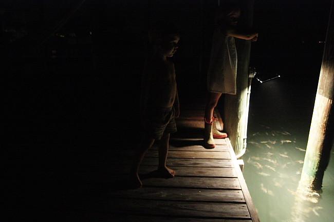 dock16