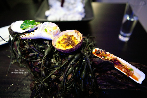 Courses 2-4: Oyster leaf, King crab, Sea urchin, Razor clam