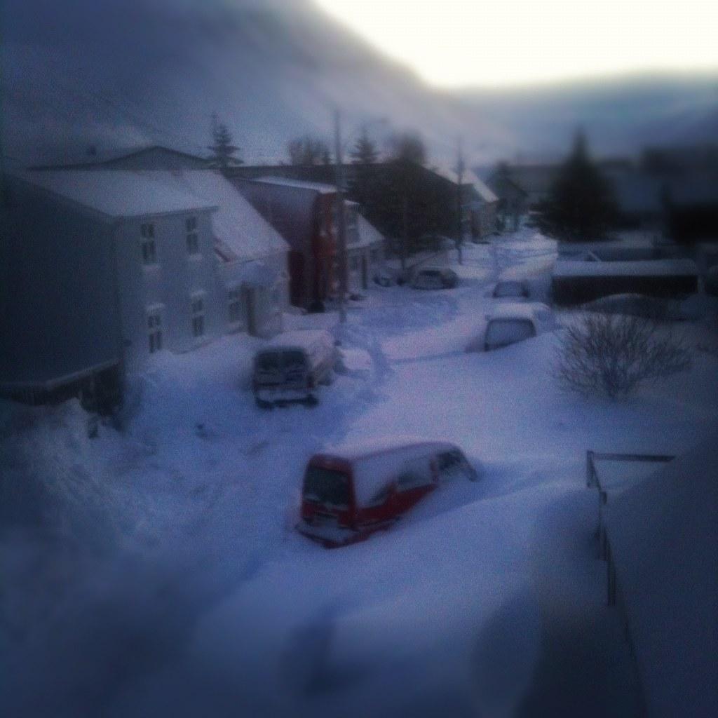 Snjódagur / snowday