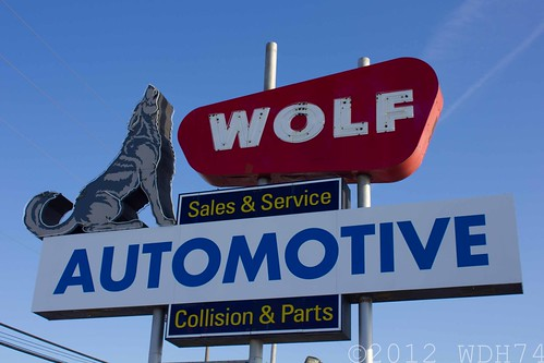 Wolf Automotive by William 74