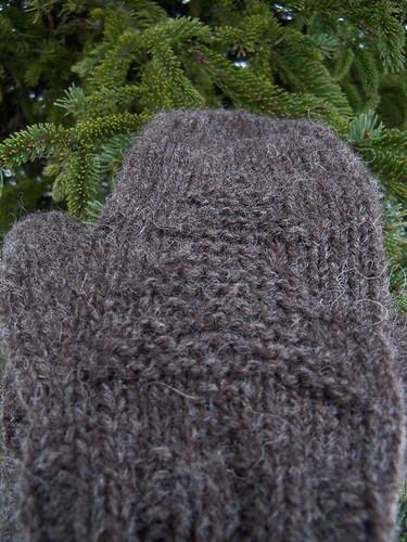 tree mittens3