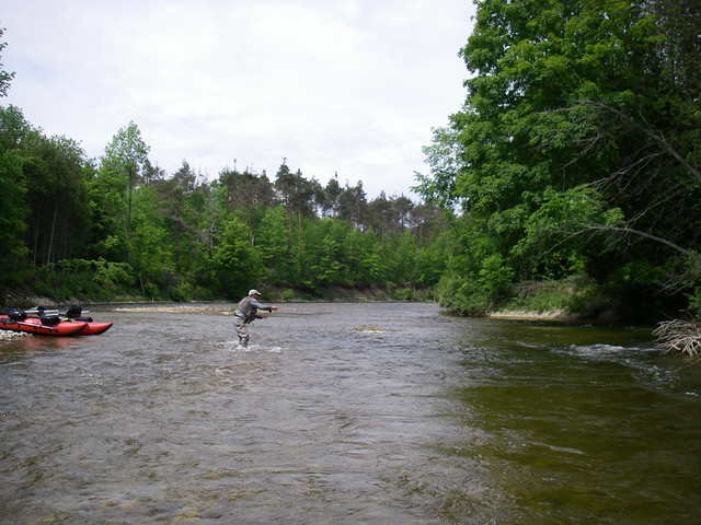 Chris fishing for Brown Trout on the Saugeen River