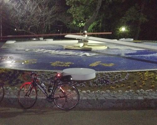 第5チェックポイント 松原公園花時計