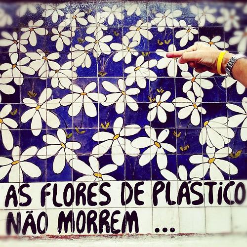 Flores by .Tatiana.