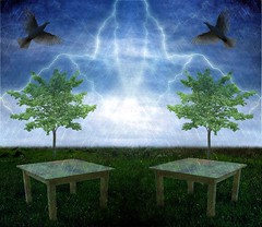 Two Doves, Two Tables And Two Trees In Stormy Weather