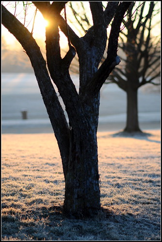 frosty sunrise 1