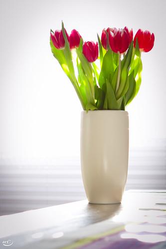 Vase mit Tulpen