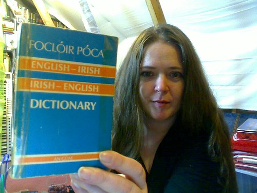 English - Irish - English dictionary