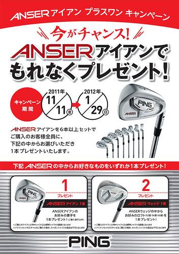 Anser +1