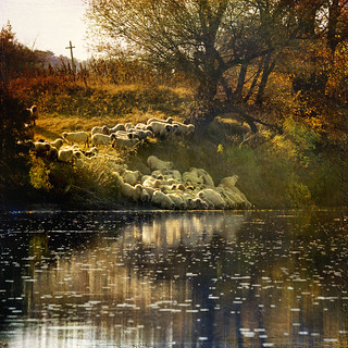 autumn pastorale