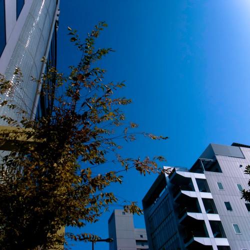 2011-11-30の空
